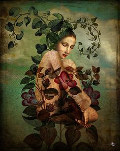 New Nature by Christian Schloe