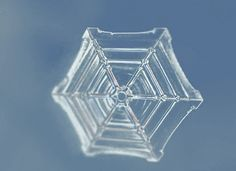 Water crystalizing into snow | 16 Striking GIFs Of Chemical & Physical Reactions