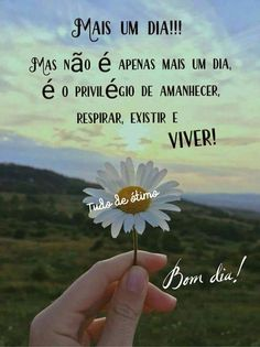 Portuguese Quotes, Mood Quotes, Happy Sunday, Good Morning, Funny, Thoughts, Blog, Instagram, Nara