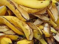 fertilizzante naturale fai da te bucce di banana