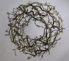 wreath design for christmas | wanted my Hazel twig wreath to look like forest filigree ...I can do,this with my contorted,filbert