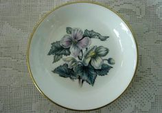 ROYAL WORCESTER Bone China Butter Pat Plate - England