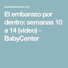 El embarazo por dentro: semanas 10 a 14 (video) - BabyCenter