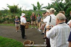 Doka Estate Coffee Tour (near SJO) Costa Rica