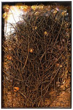 Anselm Kiefer _ Palmsonntag, Mixed Media, 215 x 141 x 11 cm. Anselm Kiefer, Contemporary Artists, Modern Art, Statues, Performance Artistique, Collages, Palm Sunday, Expo, Mixed Media Art
