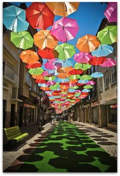 Art Symphony: You can stay under the umbrellas...