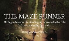 The Maze Runner - First and Last Words
