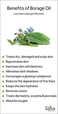 Borage Oil contains high Gamma Linolenic Acid, which is commonly known as Omega 6 fatty acid. #skincare #acnecure