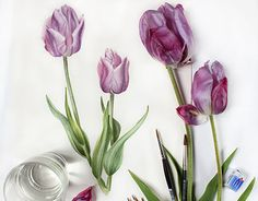 "Check out new work on my @Behance portfolio: ""Violet Tulips. Botanical watercolor."" http://be.net/gallery/41003189/Violet-Tulips-Botanical-watercolor"