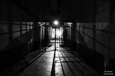 Fort Breendonk BW 7