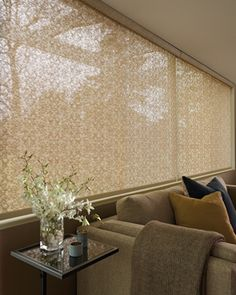 Alustra screen shades with cassette system Find purchasing options at Creative Windows of Ann Arbor MI www.creativewindows.com