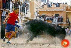 torodigital: Vall de Uxo despide las fiestas de San Vicente co...