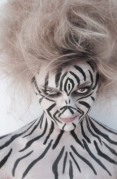 Zebra Face Animal Photography