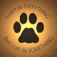 Rescue, foster, adopt, donate, transport, network, educate. We can all do something!