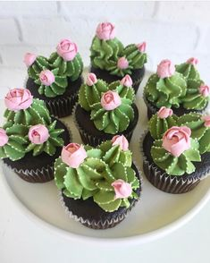 Oh my cupcakes! These are beautiful Oh my cupcakes! - Oh my cupcakes! These are beautiful Oh my cupcakes! These are beautiful Best Picture For cactus ja - Kaktus Cupcakes, Succulent Cupcakes, Cupcakes Flores, Garden Cupcakes, Food Cakes, Cupcake Cakes, Taco Cupcakes, Girl Cupcakes, Themed Cupcakes