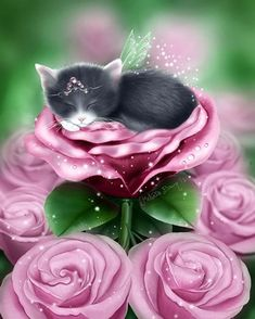 Items similar to Grey Cat Art Print // Sleeping Cat in Pink Roses // Enchanted Daydreams - on Etsy Kittens Cutest, Cats And Kittens, Kitten Images, Cat Background, Phone Background Wallpaper, Lock Screen Wallpaper, Image Chat, Cat Art Print, Cute Animal Drawings