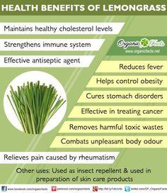 lemongrass tea benefits - Google Search