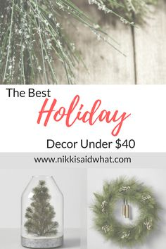 The Best Holiday Decor Under $40!