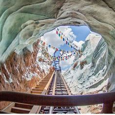 Expedition Everest in Animal Kingdom, Walt Disney World World Disney, Disney Pixar, Sea World, Magic Kingdom, Epcot, Samba, Orlando, Disney Parque, Disney Rides