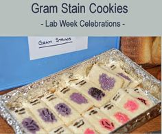 Medical Laboratory and Biomedical Science: Gram Stain Cookies