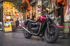 The Bonnie has landed - Triumph Street Twin review ~ Return of the Cafe Racers