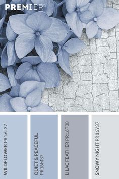 Farben Wildflower paint palette Bring A World Of Color With Blinds As life's color Wall Colors, House Colors, Bedroom Colors, Bedroom Decor, Bedroom Ideas, Blue Gray Bedroom, Periwinkle Bedroom, Bathroom Colours, Bedroom Colour Palette