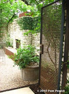 potting area keynote C:  just for the materials of this gate and how it can be a physical deer barrier and also blend in, allowing for extended views out but not call attention to itself from the street.