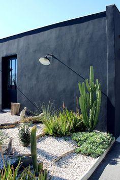 Cacti Landscaping | Black Exterior