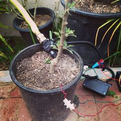 Picture of Raspberry Pi Irrigation Controller  http://jenfoxbot.blogspot.kr/2014/10/raspberry-pi-irrigation-controller.html