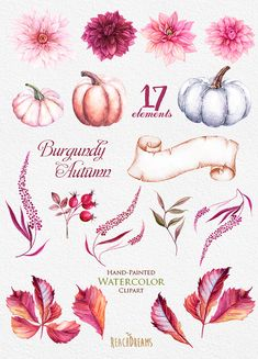 This set of high quality hand painted watercolor 17 elements - pumpkin, burgundy dahlias, leaves Perfect graphic for wedding invitations, greeting cards, photos, posters, quotes and more.   Item details:  17 PNG files. (300 dpi, RGB, transparent background) Elements size (larger side) aprox.: 12 inch, 3600 px - 4 inch, 1200 px  Bouquets with these elements: https://www.etsy.com/listing/460694158/pumpkin-dahlias-watercolor-clipart?ref=shop_home_active_1  ---------...
