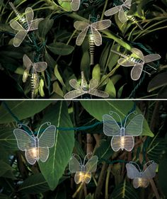 Butterfly & Dragonfly LED Light String - Hang them on shrubs or around your porch. We think they're great for lighting up a nightime pool party or bbq. How would you use them? http://impc.co/1dt8nhL