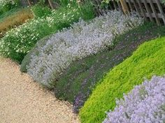 When choosing ground cover for a hillside garden, you need to use the same criteria as you do for flat land. There are several good ground cover plants for a hillside garden. Outdoor Gardens, Landscaping A Slope, Sloped Garden, Landscape Design, Lawn Alternatives, Ground Cover Plants, Lawn And Garden, Plants, Backyard Landscaping
