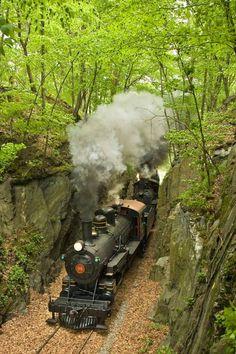 Wilmington & Western Railroad train Delaware