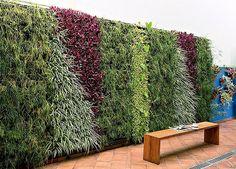 jardins verticaux, le résultat est surprenant.: