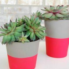 DIY Neon Pots
