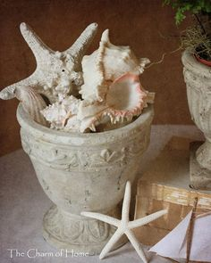 decorate with urns - Shells vignette