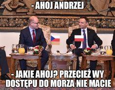 Wtf Funny, Funny Memes, Jokes, Polish Memes, Reaction Pictures, Haha, Humor, Poland, Husky Jokes