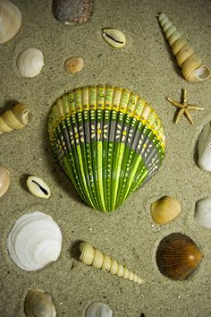 Hand painted seashell