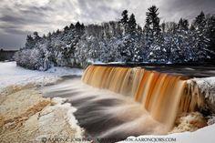 Winter Tannins – Tahquamenon Falls