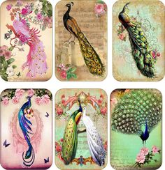 Vintage Inspiried Peacock Tags Scrapbooking Crafts Set 6 with or Without Ribbon | eBay