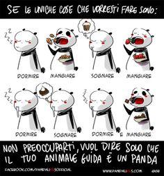 A Panda piace: spirito guida
