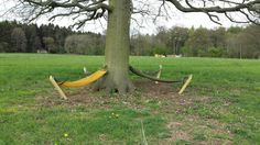 Meadow%20Hammocks%20%283%29.jpg