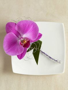 Pretty purple orchid buttonhole