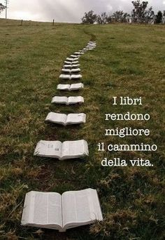 l libri e la vita:The books make it better the way of life