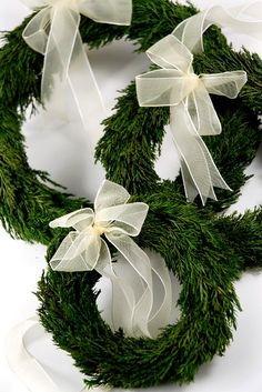 Love these beautiful wreaths!!! Bebe'!!! Beautiful white organdy ribbons!!!