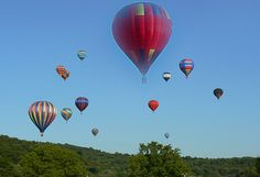 Hot air balloon race at Funfest. East Tennessee