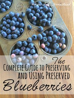 How to preserve blueberries through freezing, canning, and dehydrating. And better yet, how to use them once you& preserved them! From Whole-Fed Homestead Blueberry Cobbler, Blueberry Recipes, Fruit Recipes, Real Food Recipes, Blueberry Season, Recipies, Vegan Recipes, Canning Tips, Home Canning