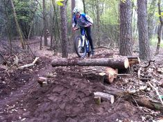 Log and dirt mountainbike obstacle with chicken run at the side