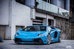 LamborghiniBaby Blue