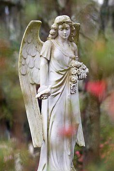 'Savannah Angel' by Ellen McKnight Bonaventure Cemetery, Cemetery Angels, Angel Statues, Don't Blink, Savannah Chat, Mystic, Garden Sculpture, Heavenly, Georgia